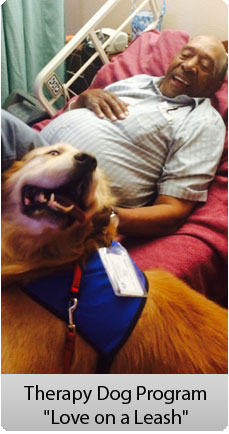 love on a leash therapy dog program  movin on up k9 training